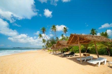14148249-tropical-beach-in-sri-lanka.jpg